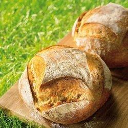 Paysan – Boulanger : deux métiers, deux passions, un seul but : faire du pain bio !