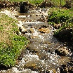 Retrouver le bon état écologique de nos cours d'eau en 2015 : la mission des techniciens de rivière